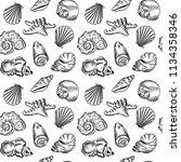sea shell beach hand drawn... | Shutterstock .eps vector #1134358346
