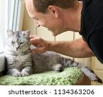 Stock photo cat and man portrait of happy cat and young man people playing with the kitten handsome young 1134363206
