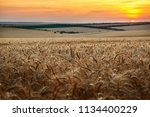 beautiful sunset and sky in the ... | Shutterstock . vector #1134400229