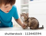 My kitten has fleas - boy looking at his cat scratching its ears - stock photo