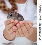 Little girl hands holding hamster - closeup - stock photo