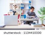 businessman working with... | Shutterstock . vector #1134410330