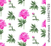 seamless pattern. pink peony.... | Shutterstock . vector #1134417923
