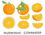 bright vector set of colorful... | Shutterstock .eps vector #1134464039