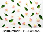floral arranged composition... | Shutterstock . vector #1134501566