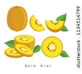gold kiwi fruit   Shutterstock .eps vector #1134514799