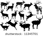 illustration with deer... | Shutterstock . vector #11345701