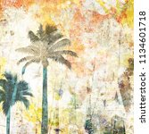 tropical palm grunge background ...   Shutterstock . vector #1134601718