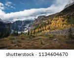 plain of six glaciers track... | Shutterstock . vector #1134604670