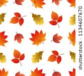 vector seamless pattern with... | Shutterstock .eps vector #1134607670