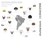 dogs by country of origin.... | Shutterstock .eps vector #1134622508