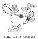 sketch graphic illustration... | Shutterstock .eps vector #1134642524