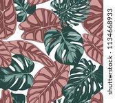 tropical jungle leaves. vector...   Shutterstock .eps vector #1134668933