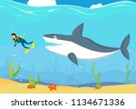 aggressive big shark trying to... | Shutterstock .eps vector #1134671336