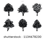 black tree silhouettes isolated ... | Shutterstock .eps vector #1134678230