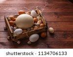 Huge Ostrich Egg Surrounded...