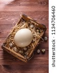 big ostrich egg on straw... | Shutterstock . vector #1134706460