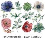 Watercolor Eucalyptus ...