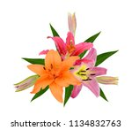 beautiful lily bouquet isolated ... | Shutterstock . vector #1134832763