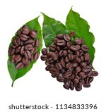 coffee beans and coffee leaf... | Shutterstock . vector #1134833396