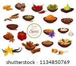 spice poster of condiment and... | Shutterstock .eps vector #1134850769