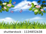 a nature and plant landscape... | Shutterstock .eps vector #1134852638
