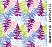 fern frond herbs  tropical... | Shutterstock .eps vector #1134926966