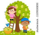 two children  a boy and a girl... | Shutterstock . vector #1135030850