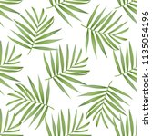 vector palm frond. tropical... | Shutterstock .eps vector #1135054196