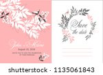 vector illustration template... | Shutterstock .eps vector #1135061843