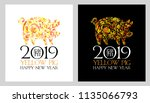 2019 chinese new year  year of... | Shutterstock .eps vector #1135066793