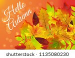 hello autumn. hand drawn nature ... | Shutterstock .eps vector #1135080230