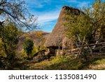 ramet  romania   october 19 ...   Shutterstock . vector #1135081490