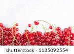 summer creative concept ... | Shutterstock . vector #1135092554
