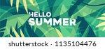 hello summer banner  summer... | Shutterstock .eps vector #1135104476
