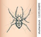 vintage spyder drawing. tattoo... | Shutterstock .eps vector #1135134890