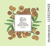 background with soap nuts ... | Shutterstock .eps vector #1135219433