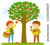 two kids picking apples from... | Shutterstock .eps vector #1135235819