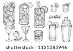 hand drawn sketch vector... | Shutterstock .eps vector #1135285946