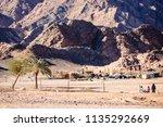 bedouin settlement in the...   Shutterstock . vector #1135292669
