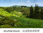 amazing landscape with green... | Shutterstock . vector #1135315529