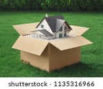 new house in a box  green home  ... | Shutterstock . vector #1135316966
