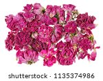 Stock photo dried pink rose flowers are used in medicine for tea making isolated on white studio macro shot 1135374986