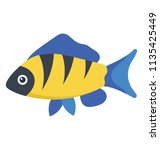 clown loach or tiger botia is... | Shutterstock .eps vector #1135425449