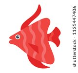 a beautiful asian fish with... | Shutterstock .eps vector #1135447406
