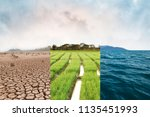 climate change  compare image... | Shutterstock . vector #1135451993