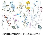 watercolor set of isolated... | Shutterstock . vector #1135538390