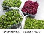 micro herb display | Shutterstock . vector #1135547570