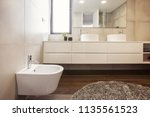 luxury bathroom interior with... | Shutterstock . vector #1135561523