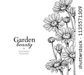daisy flower border drawing.... | Shutterstock .eps vector #1135571309